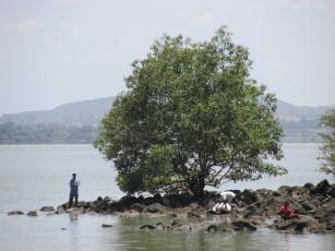 Lago Tana, Bahir Dar