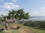 Hawassa y su impresionante lago