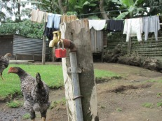 Casa de campo en Nakuru, Kenia