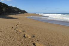 Las playas de Port Shepstone