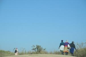 Los campos sembrados cerca de Gorge