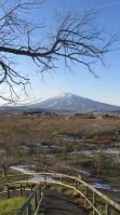 El parque de las manzanas en Hirosaki.