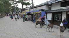 Nara, Japón.