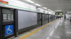 El Metro de Seúl, Corea del Sur