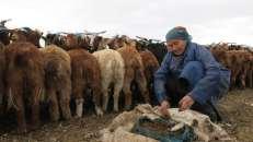 Bukhmurun, Mongolia
